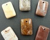 Jasper From the Mojave Desert Pendant Stones 6 pieces