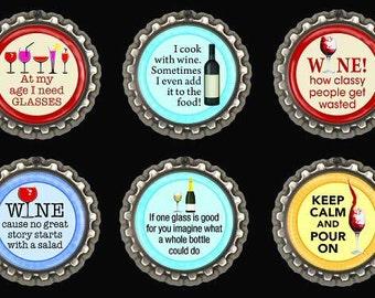 Kitchen Refrigerator Fridge Locker Magnets Wine Humor Set of 6