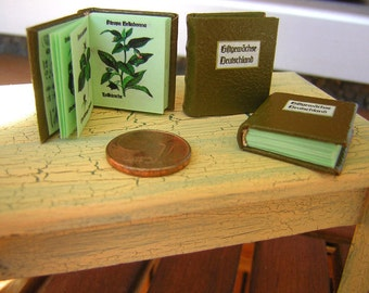 Poison plants of Germany 1/12 miniature book,