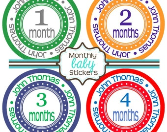 Monthly Baby Stickers - Baby Shower Gift and Photo Prop - 191b