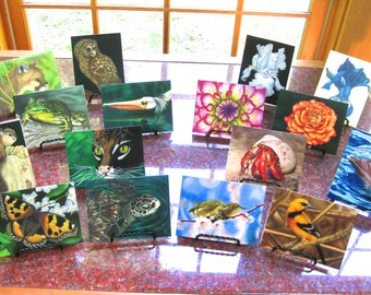 4 Boxes of Art Greeting Cards (32 cards total, w/envelopes)