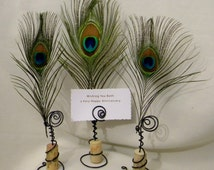SINGLE Wedding-Up-cycled Cork Place Card  Holders  w/Peacock Feather