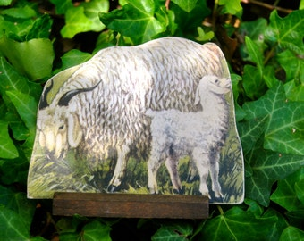 1930's Antique Die Cut Cardboard Standing Lithograph Angora Goat and Kid