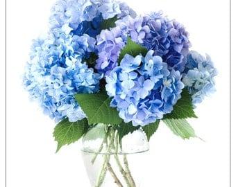 Vase hydrangea etsy fr - Terre pour hortensia bleu ...