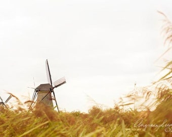 Holland Windmill photo, Amsterdam, Kinderdijk, golden meadow fields, Netherlands, Autumn, Fall, Serenity-prairie, wall decor, Christmas gift