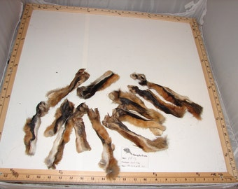 ff-3 RED FOX 10 Damaged Paws Legs Foot Taxidermy Pelt Native Tribal Art Craft Fur Supply LIMITED Stock and time