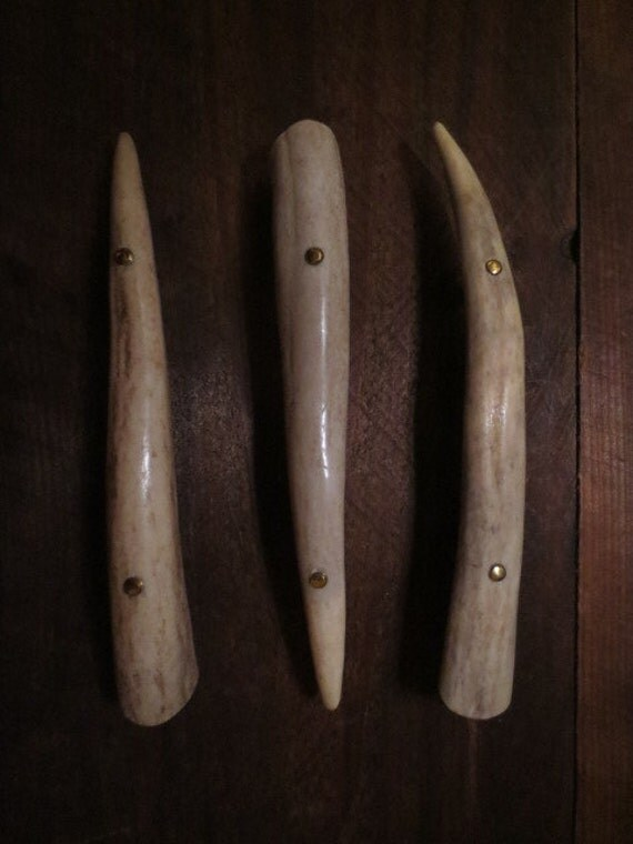 6 Shed Antler Tine Handles Drawer Pulls Deer By Antlerartisans