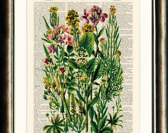 Floral 3 - vintage image printed on a page from a late 1800s Dictionary Buy 3 get 1 FREE
