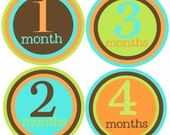 Monthly Baby Boy Stickers-Baby Month Stickers-Great Baby Shower Gift- Monthly Milestone Stickers- Just Born Sticker Included