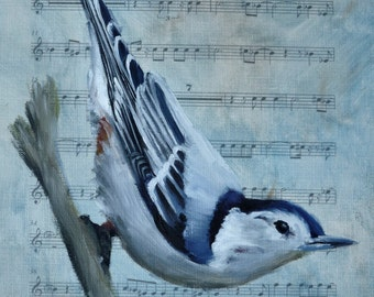 White - Breasted Nuthatch Song Bird PRINT on Sheet Music, Fine Art, after  Original Oil Paintigng Bird Art on Etsy