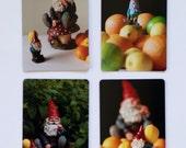 Gnome Magnet Set: 4 Fine Art photographs!