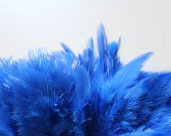 Royal Blue Hackle Hen Feather Fringe / 20 loose feathers