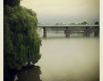 City landscape miniature photography - London Thames River
