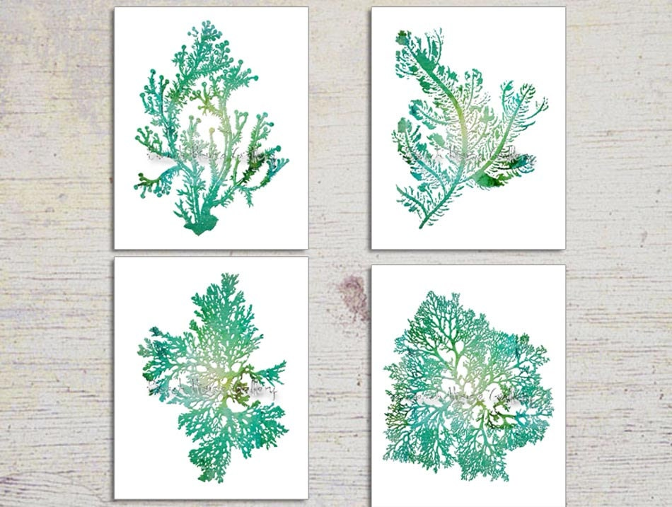 Turquoise Home Decor Seaweed Illustrations Zoom