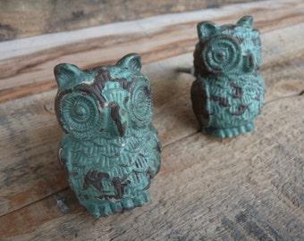 Distressed Teal / Aqua OWL KNOB / Rustic Cast Iron Dresser Cabinet Drawer Pulls