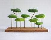 Tabletop stylized forest in shades of green, Japanese garden bonsai feel