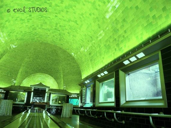 Michigan Public Aquarium : Under The Green Sea: Belle Isle Aquarium, Detroit, Michigan. 8x10 in ...