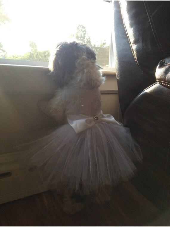 Dog wedding dress for Dog wedding dresses