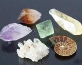 mineral specimen set: ammonite fossil, golden healing quartz cluster, citrine and amethyst crystal points, fluorite crystal, gift under 50