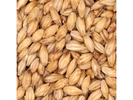 All Natural Raw GAMBRINUS ESB Brewers Malted Grain For Home Beer Brewing 1 Pound