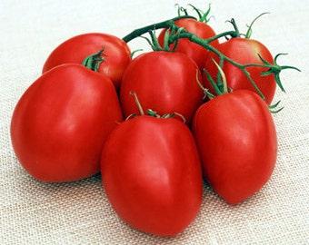 Organically Grown, non-GMO, Heirloom Amish Paste Tomato Seeds