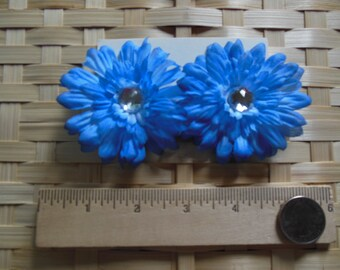 Set of 2 hair clips