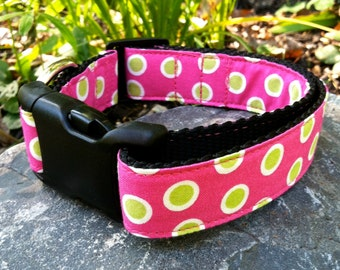 Dog Collar- Pink with Polka Dots
