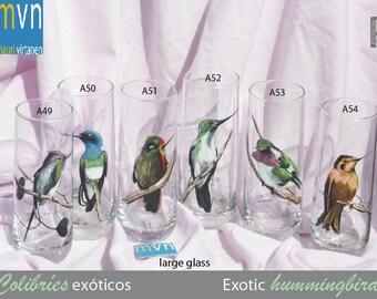 Exotic Hummingbirds, fine art  hand painted glasses, set of glasses, bird art