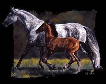 Dapple Gray Mare & Bay Foal  Horse T SHIRT, Sweatshirt, Quilt Fabric Block 241