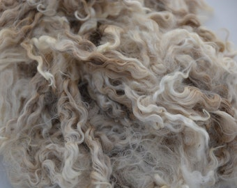 Raw KID Mohair locks, 8 ounces, unwashed