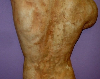 Roman Greek Male Torso Physique Wall Sculpture Plaque David Back Profile
