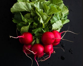 Radishes Food Photography, Photo Print, Wall Art, Kitchen Decor, Dining Room Decor, Home Decor, Restaurant Decor, Vegetable Photography
