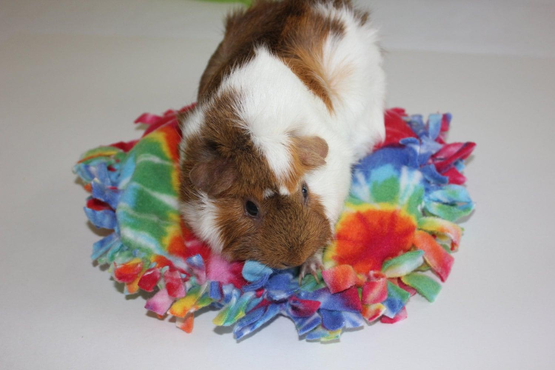 how to make a guinea pig bed