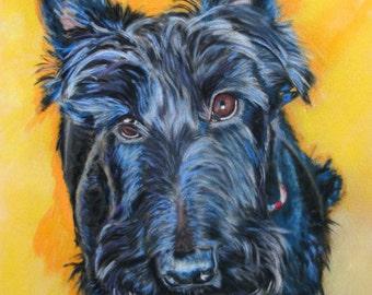 Emily in Blue - scottie dog - Fine art digital print of original pastel painting by Vicki Horsley