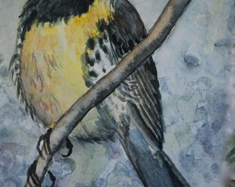 """This is a print of my original painting titled """" Kirtland Warbler"""".5x7, 8x10,11x14,wrapped canvas and note cards"""