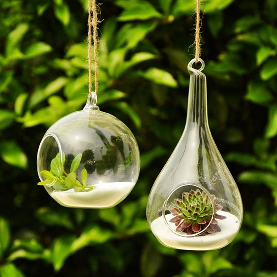 Fashion transparent hanging glass vase creative home decoration Succulent Terrarium Kit Housewarming Green Gift