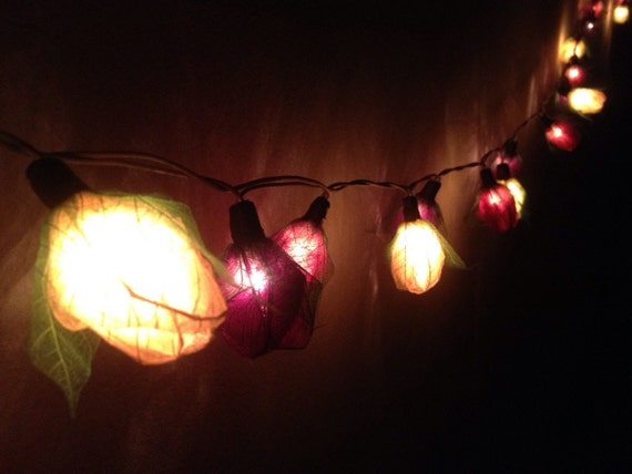 Fairy string lights 20 pieces for home by Icandylighting on Etsy