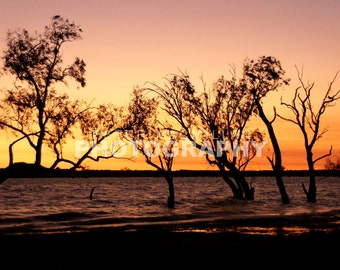 Majestic Sunrise Glow - Floodwater Lake - Near Birdsville - Outback Australia
