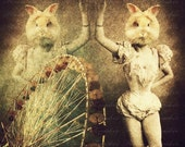 Trapezist Bunny - 8x8 Photo Framed