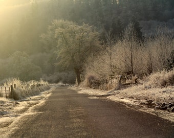 Winter Frost photograph,landscape photography,Instant Download, Printable, Wall Art, Fine Art