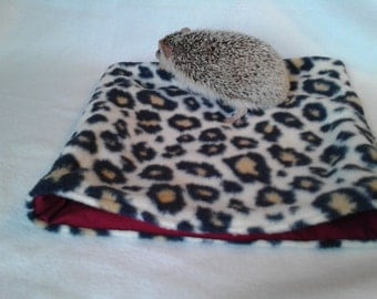 "Lily's ""bringing sexy back"" cozy hedgie bag"
