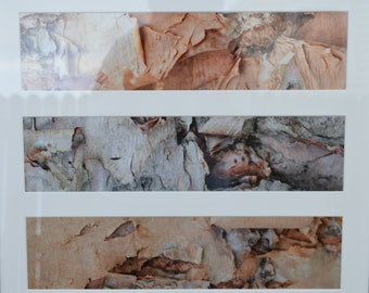 Panoramic Photographs Peeling Bark Fine Art Prints Framed