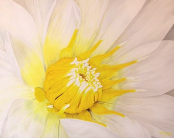"""Original Oil Painting, Water Lily, White, Flower - """"Sunny"""" (30"""" x 40"""")"""