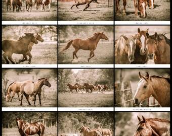 "2017 Horse Wall Calendar in 19"" x 13.5"""
