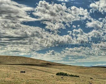 Old Ranch House Under The Big Sky, Montana