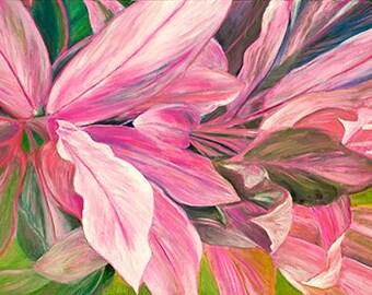 32. Ti Leaf - Red, Pink