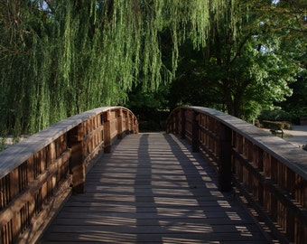 Bridge with Weeping Willow