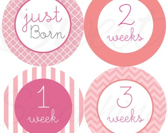 Monthly Stickers for Girls - Pink and Coral Just Born to 3 Weeks - Milestone Stickers - Chevron Stripes Clover - Babys First Year