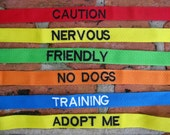 Custom Dog Leashes with Text