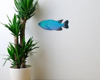 Blue Damselfish Sea Life Vinyl Decal - Chrysiptera cyanea